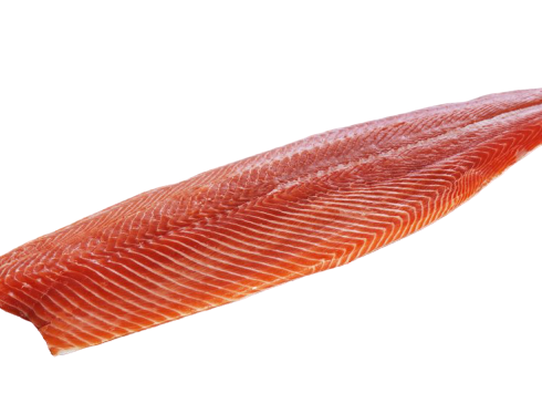 Trout-Fillet3-removebg-preview.png