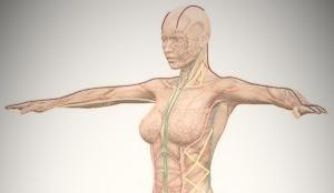 Postura e Benessere in Medicina Cinese.
