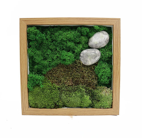 Moss frame brown