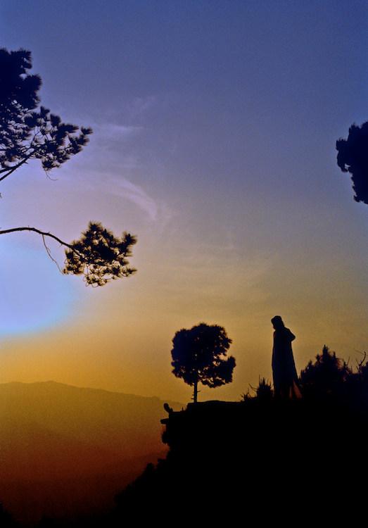 Sun and Yogi