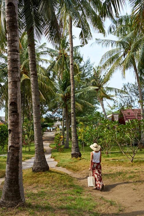 Walking through palm trees