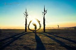 Truth & Beauty Burning Man