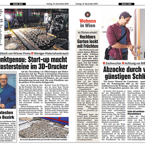 Article in Kronen Zeitung