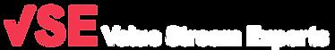 VSE-nav-header-logo-red.png