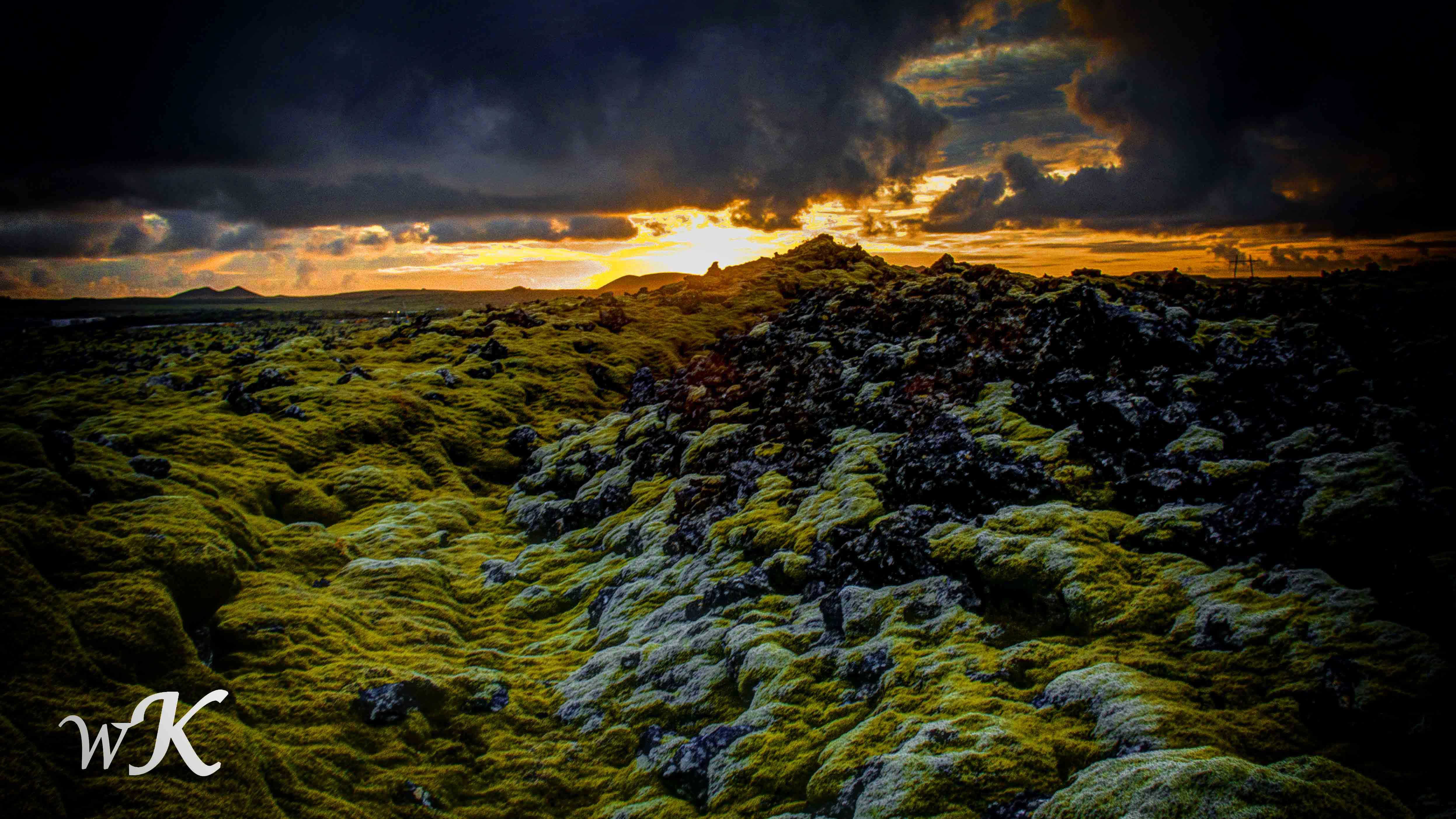 Lava-Lichen Landscape