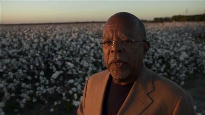 The Cotton Economy and Slavery
