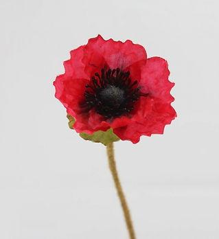 30176_anzac-day-flanders-red-poppy-47cm_