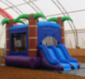 bouncycastle2.jpg