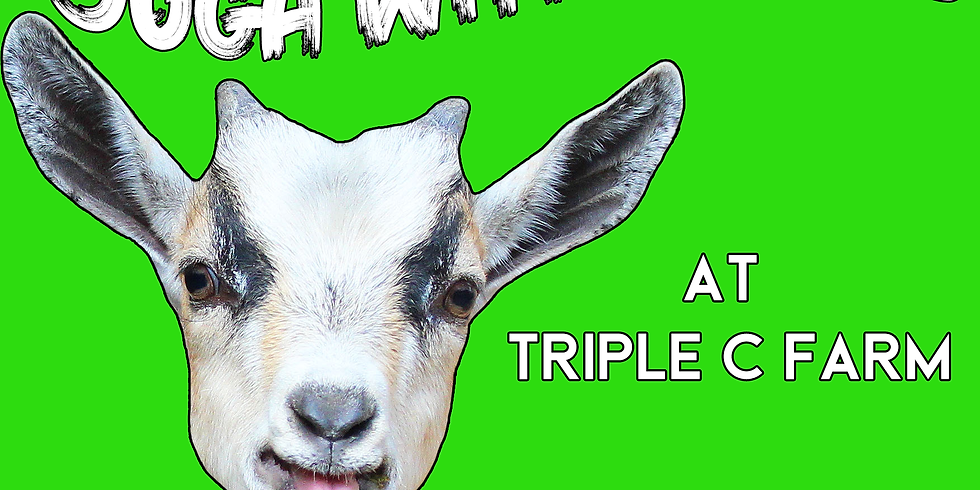 Indoor Yoga with Goats on March 8, 2020 at 1:00pm