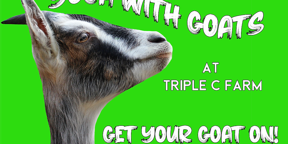Indoor Yoga with Goats on March 14, 2020 at 1:00pm