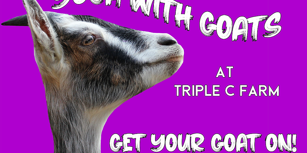 Indoor Yoga with Goats on March 29, 2020 at 2:00pm
