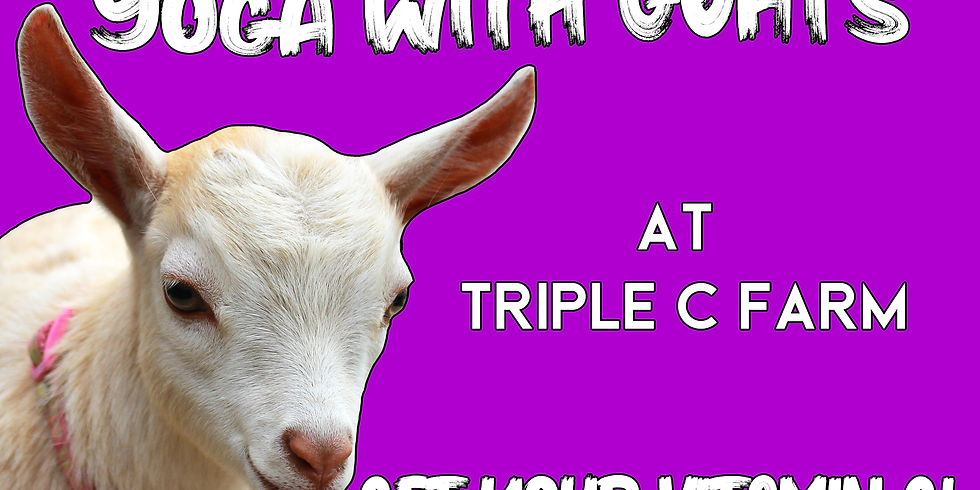 Indoor Yoga with Goats on March 15, 2020 at 2:00pm