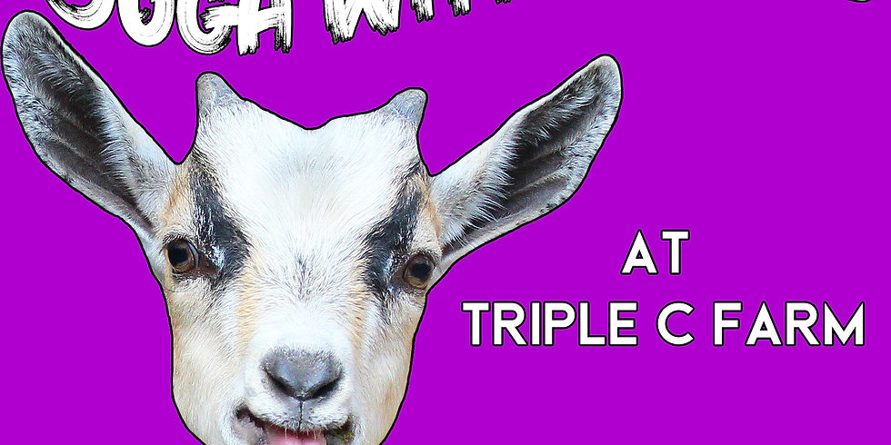 SOLD OUT! Indoor Yoga with Goats on March 1, 2020 at 2:00pm