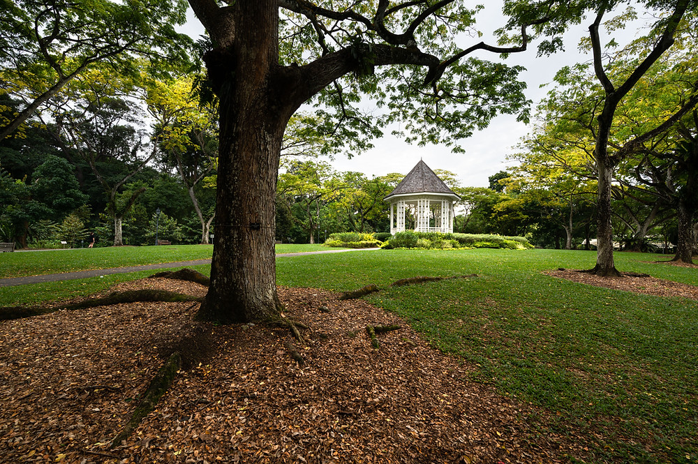 bandstand, singapore botanic gardens