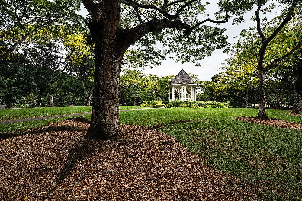 bandstand gazebo, singapore botanic gardens