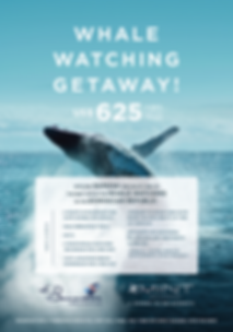 Whales Getaway Com small.png