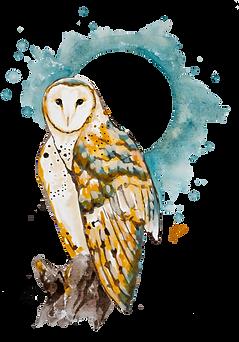 owl black logo.png