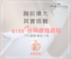 Chinese AN Ad Banner.png