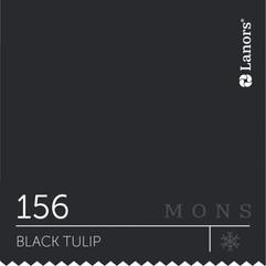 Lanors Mons «Black Tulip».jpg