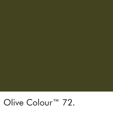 72_Olive-Colour_Swatch-LR.jpg