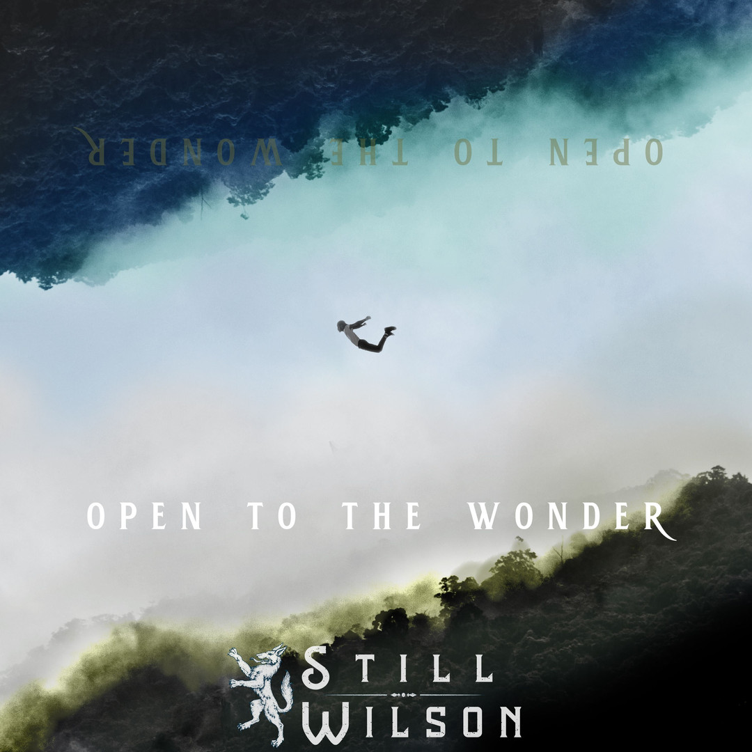 Open To The Wonder