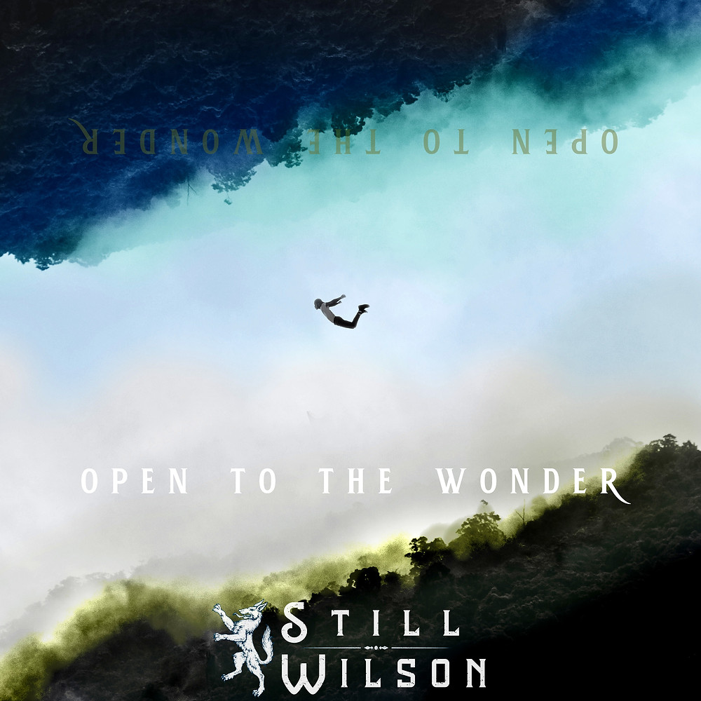 Open To The Wonder - cover art