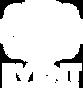 phemstar logo white png.png
