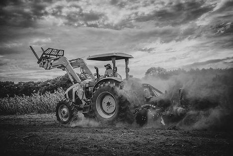 Crane Estate show, Andrew on tractor, 24