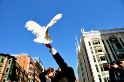 Boston photographer, journalist