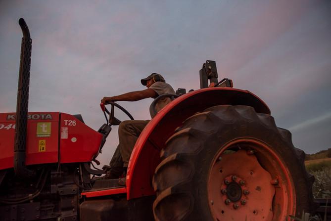 andrew on tractor, aug 2020, terri unger