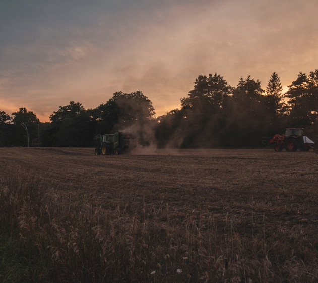 haying in homefield 1, august 2020, terr