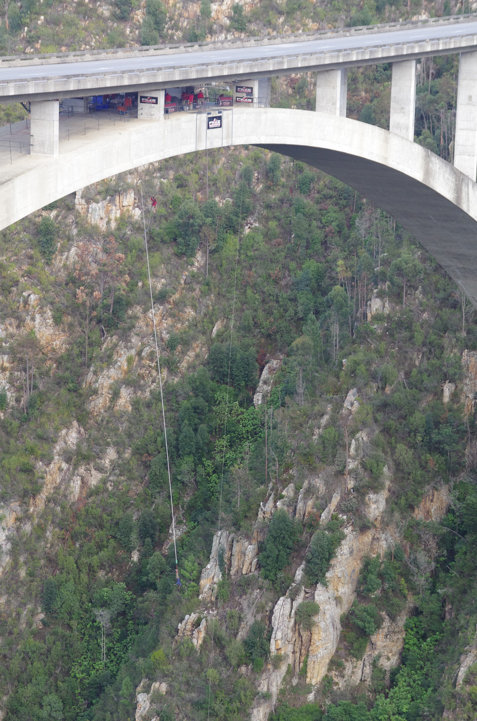 Bungee jumping in South Africa (during my undergraduate field school course)
