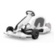 segway-ninebot-go-cart-Animation_anniversaire_Grenoble