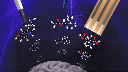 Frontiers in electrochemical sensors for neurotransmitter detection: towards measuring neurotransmit