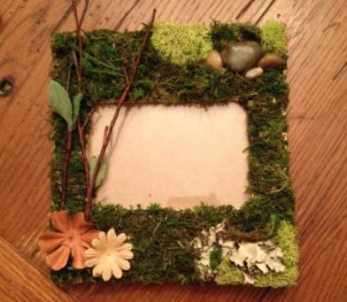 DIY Nature Photo Frames