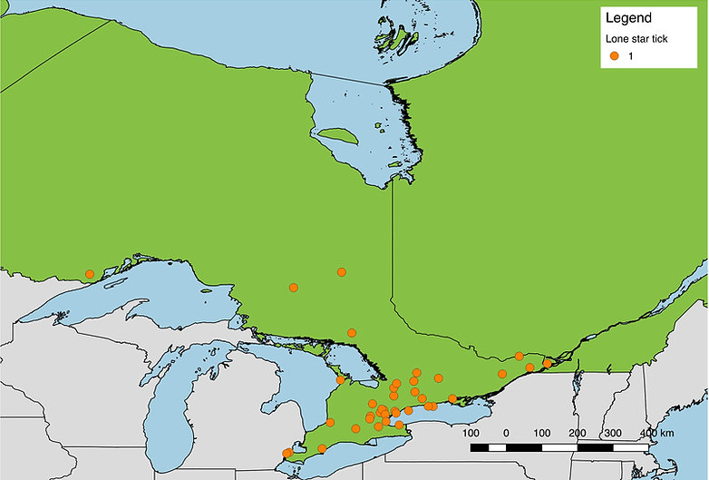 Lone star ticks submitted from Southern Ontario, 2017
