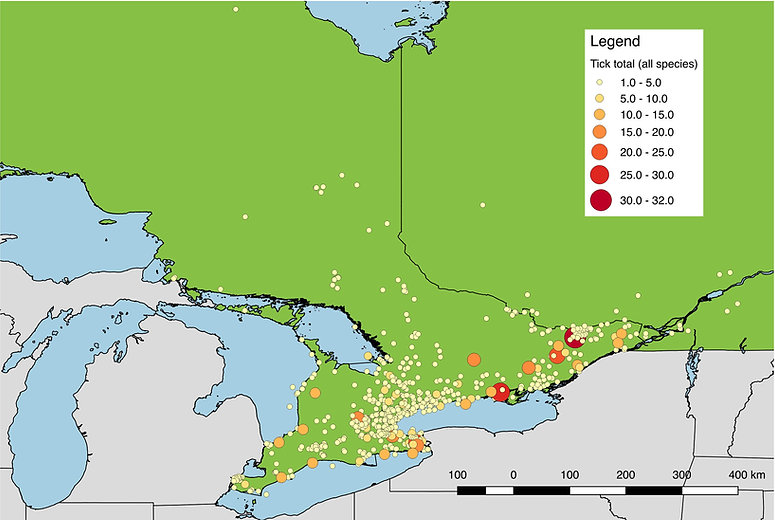 All ticks submitted from Southern Ontario, 2017