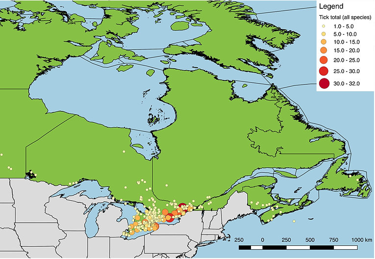 All ticks submitted from Eastern Canada, 2017