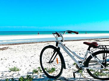 Renta de Bicycletas