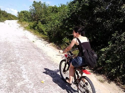 Rental Bike