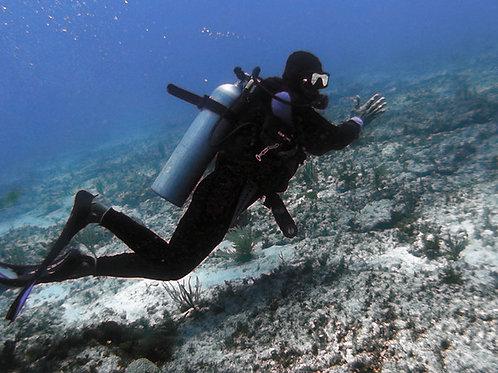Certified Scuba Diving