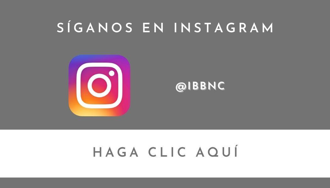 Síganos en Instagram