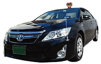 sightseeing kyoto taxi mk hire limousine