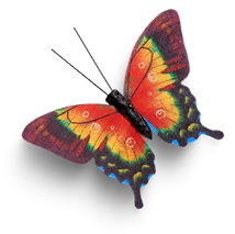 Butterfly 6.png