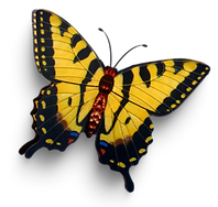 Butterfly 22.png