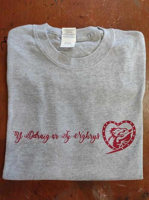 The dragon's t-shirt on my shirt