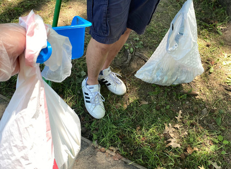July 2020 - The Bronx Needs Cleaning