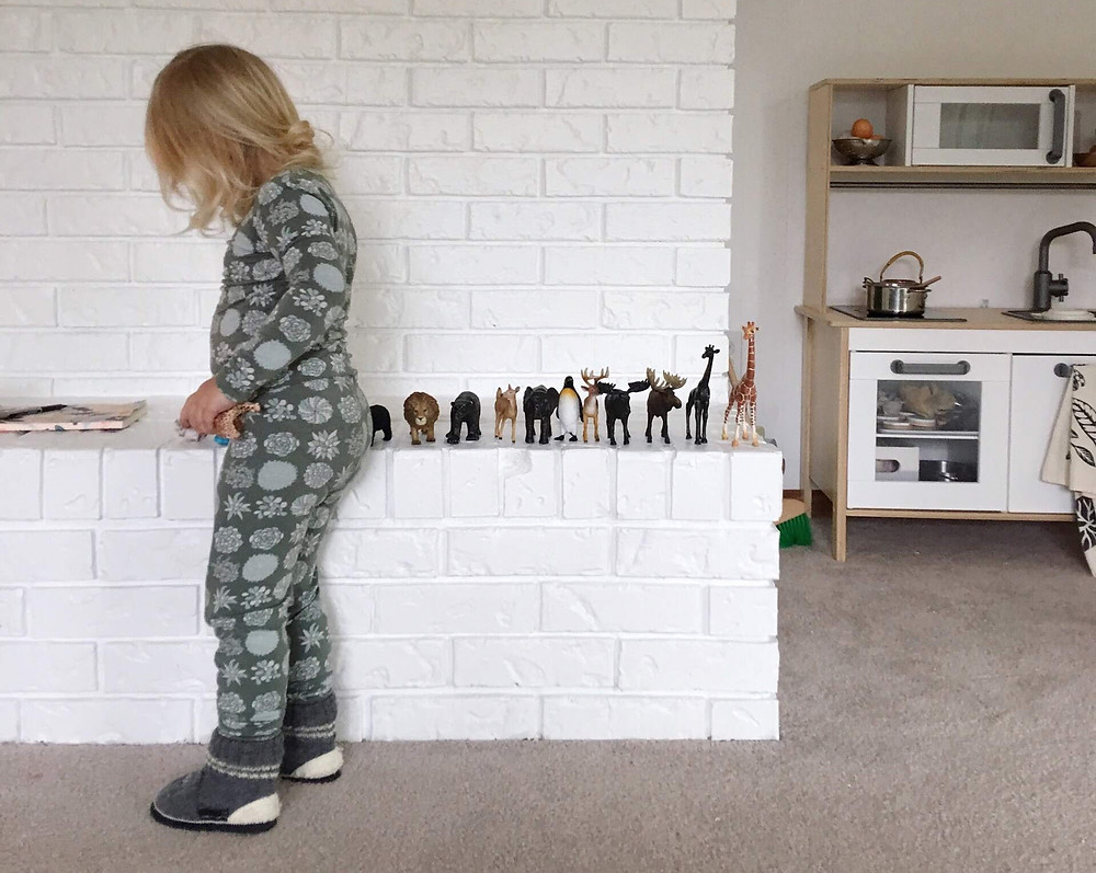 3 year old lining up toy animals biggest to smallest