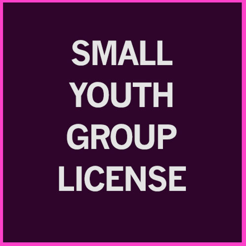 Small Group Youth License