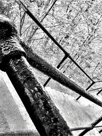 Web Snow.jpg